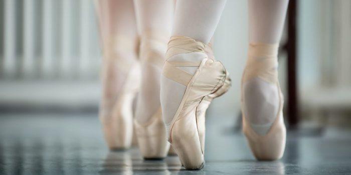danza-slider-1